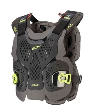 Picture of A-1 PLUS CHEST PROTECTOR - 2020